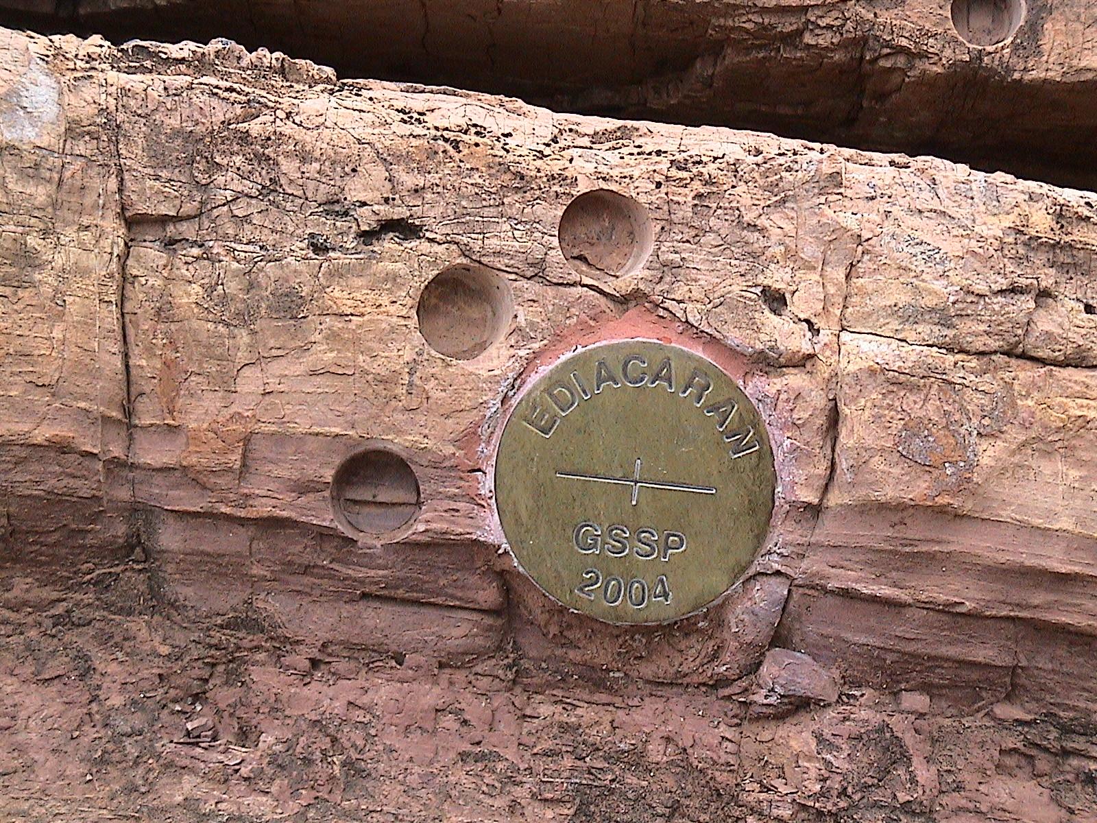 หมุดทองระบุตำแหน่งชุดหินอ้างอิง (GSSP) ของยุคเอเดียคาเรน (Ediacaran Period) ในประเทศออสเตรเลีย รอยวงกลมบนหินคือตำแหน่งที่เก็บตัวอย่างหินสำหรับการศึกษาการเปลี่ยนแปลงสนามแม่เหล็กโลก