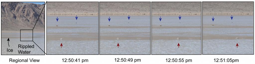 ภาพแสดงการเคลื่อนที่ของหิน (ลูกศรสีแดง) เทียบกับหินที่อยู่นิ่ง (ลูกศรสีนำ้เงิน) Image credit doi:10.1371/journal.pone.0105948.g001