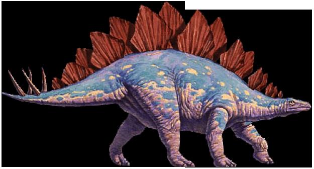 รูปภาพจาก http://paleo.cc/paluxy/stegosaur-claim.htm